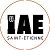 iae_st_etienne logo